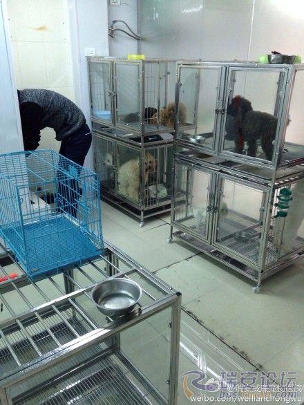 威廉宠物医院已经重新装修完毕